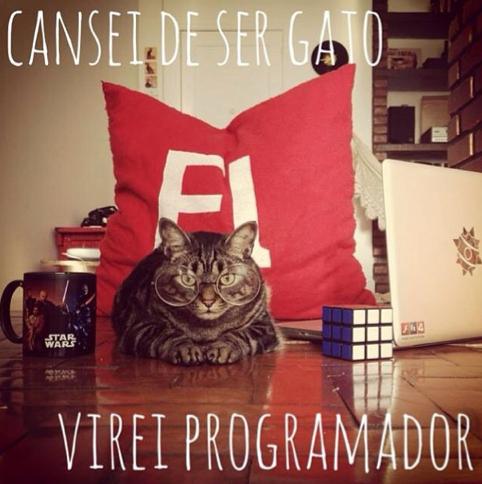 Cansei de ser gato: Hazte programador