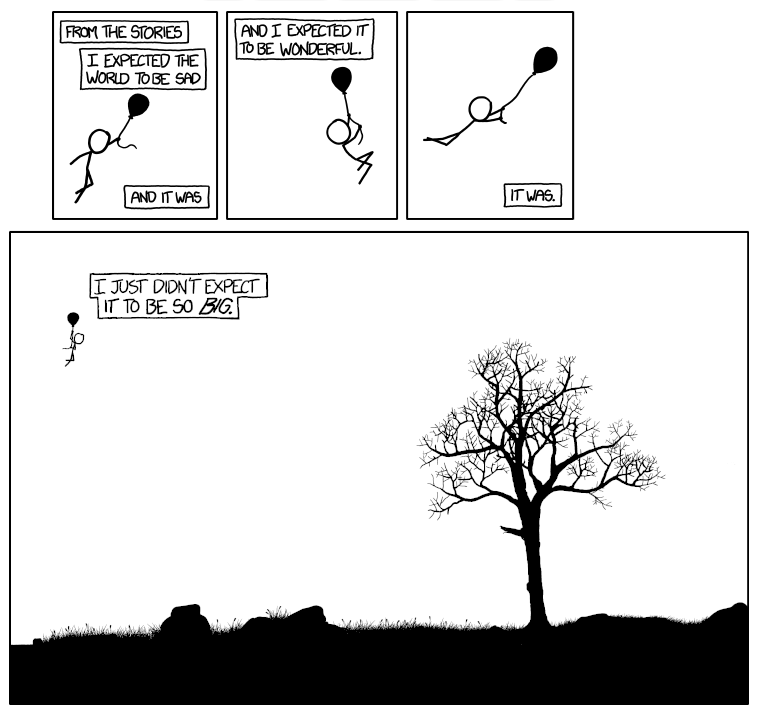 xkcd comic sulle spille