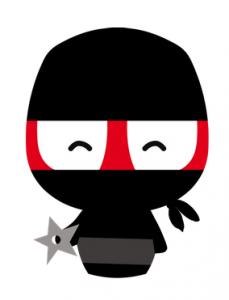 Camaloon Ninja