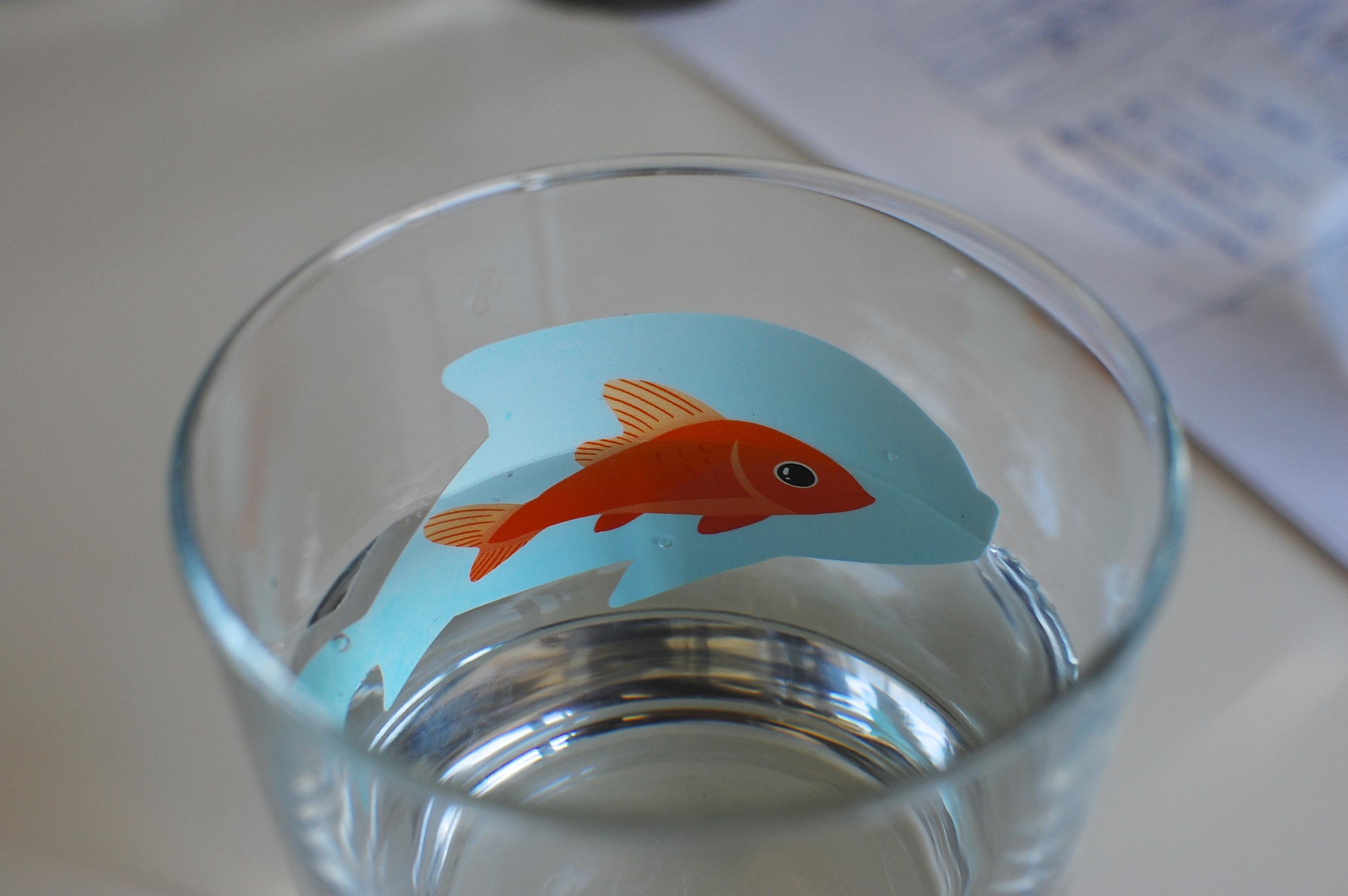 Aquarium with fish sticker