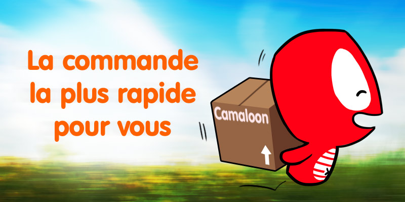 Camaloon badges rapide